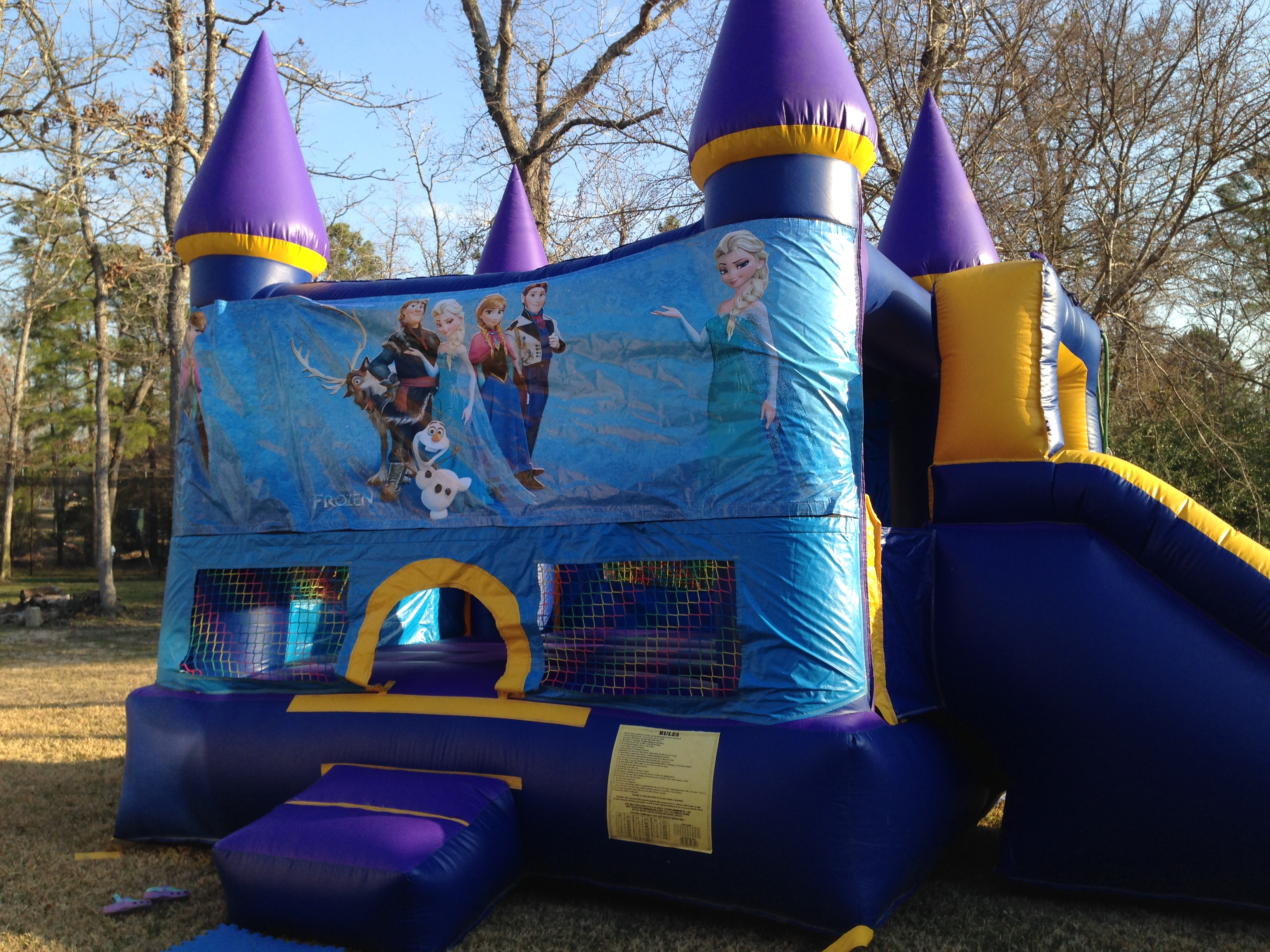 Frozen party rental - Bounce House, snow machine, and ...